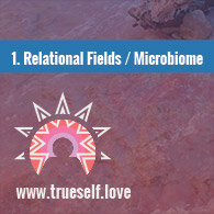 True Self Love Workshops