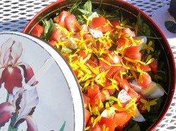 Potato & Wild Herb Salad