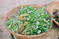 Pennywort Salad (Min Kwa Yuet)