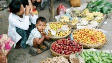 World Food Thursdays 11