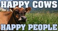Happy Cows Happy People