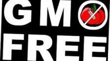 Richmond City Council Debate on Banning GMO