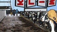 Raw Milk Reality: Is Raw Milk Dangerous?