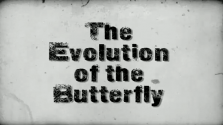 Bruce Lipton – The Evolution of the Butterfly