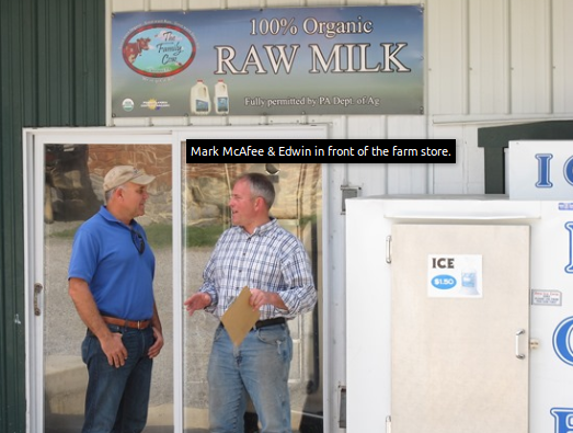 Mark McAfee visits the family cow.